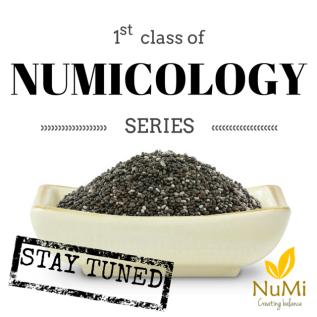 1st Class ofNUMICOLOGY